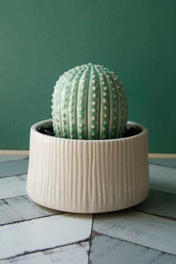 porcelain cactus