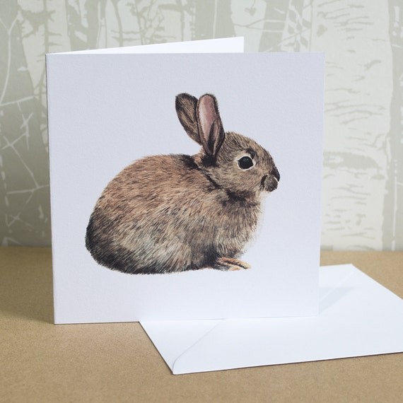 123mm x 123mm Wild Rabbit Greeting Card (Blank Inside) | British Wildlife | All Occasions