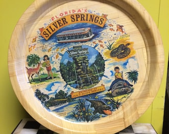 """Vintage Pressed Bamboo  """"Florida's Silver Springs"""" Tray"""