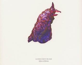 Letterpress print, California Brown Sea Hare. Aplysia californica