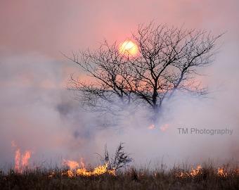 Sunset - Fire - Smoke - Flint Hills - Kansas - Kansas Prairie - Controlled Burn - Controlled Fire - Tallgrass Prairie Preserve - Fine Art