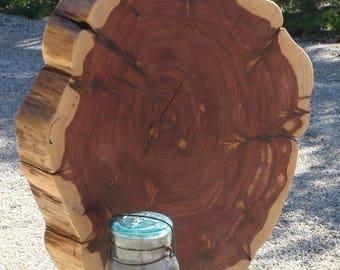 Large rustic wedding centerpiece, Extra Large Tree Slice, Large Wood Slice, sanded + finished, large cake base, rustic | outdoorsy wedding