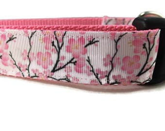 Dog Collar and Leash, Cherry Blossom, 1 inch wide, 6ft leash, quick release, metal buckle, chain, martingale, hybrid, nylon