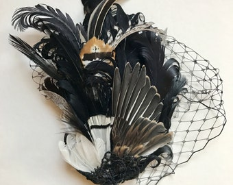Taxidermy Wing Feather Fascinator Hair Piece
