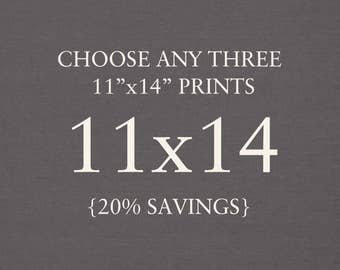 "You Choose Any Three 11""x14"" Photographs. Collection. 20% Savings. Affordable Home Decor. Wall Art, Gift Set."