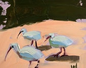 White Ibis Original Bird Oil Painting by Angela Moulton 6 x 6 inch on Panel