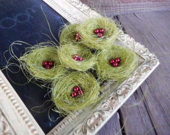 Bird Nests Chic Shabby Green with Red Eggs Romantic Home Set of 6 by PerchAndPatina