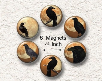 "Crow Magnets, Choose from the 4 Different Prints, Set Of 6, Size 1.25"", Buy 3 Sets Get 1 Set Free 6-007M"