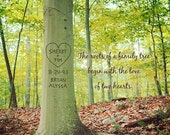 Sale Personalized Tree Art, Roots of Love, Family Tree Print, Custom Photo Art, Inspirational Wall Decor, Personalized Gift for Family