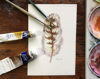 Red-tailed hawk feather study - original watercolour