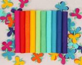 Wool Felt // Bright Side // DIY Garland, Merino Wool Felt Sheets, Rainbow Crafts, Bright Felt Assortment, Trolls Inspired Felt Collection