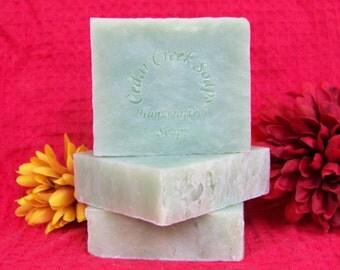 Green Apple Soap Granny Smith Apple Cold Processed Soap Vegan Soap