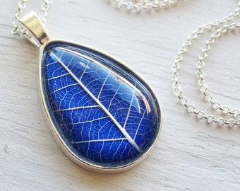 Real Pressed Leaf Necklace - Cobalt Blue Botanical Teardrop Necklace in Silver