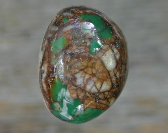 Turquoise cabochon Kings Manassa Colorado mine   cabochon,  B-81
