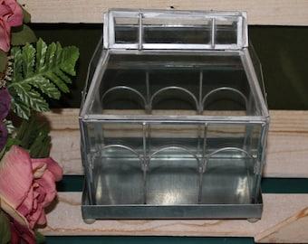 Petite Glass Terrarium