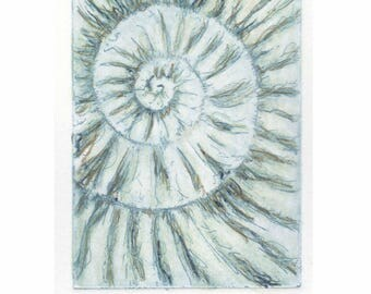 Original ammonite fossil zinc etching no.92 with mixed media jurassic Dorset coast fossil spiral fossil ammonites golden section