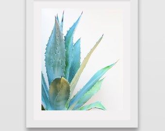 Succulent Cactus Print Art Prints Wall Decor Succulents Cacti Modern Poster Downloadable Printable Photo Photography Botanical Picture Mint