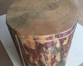 Handcrafted 10 Piece Aleppo Pine Log Puzzle Box with secret inner compartment