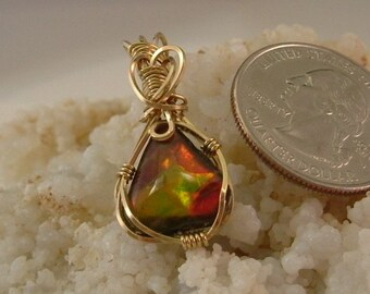 Bright Gem Red, Green, Orange, Yellow to Gold Fire Ammolite from Utah Deposit Wire Wrapped Pendant Using Gold Filled Wire 519