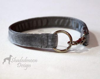 Italian Greyhounds Easy On/Off Custom Fit Grey Velvet I.D. / Tag / House Collars for use alone or with Shadedmoon Martingales    see details
