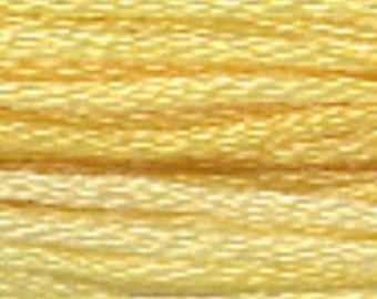 DAFFODIL 0640 : Gentle Art GAST hand-dyed embroidery floss cross stitch thread at thecottageneedle.com