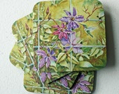 Hummingbird Coasters, Clematis Flowers, Home Decor Art,  Set of 4
