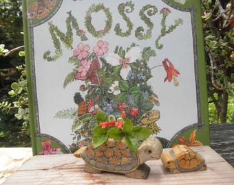 Wood Toy Set Mossy Turtle-Baby Turtle-Story Book Series-Waldorf Inspired