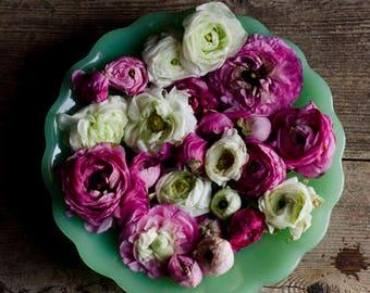 farmhouse decor, ranunculus art, floral nursery decor, rustic kitchen decor, rustic flower art, girls room decor, romantic floral,