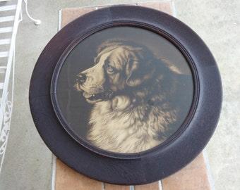 "antique print original dog st. saint bernard Large round frame unique Victorian 27"" Bayard Walnut"