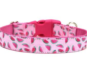 """Watermelon Dog Collar 1"""" Summer Dog Collar"""