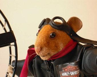 Harley...the biker hamster