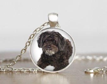 Schnoodle Pendant Necklace or Keychain