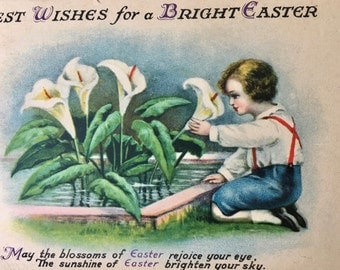 Sweet Edwardian Era Easter Postcard with Boy Looking At Easter Lilies