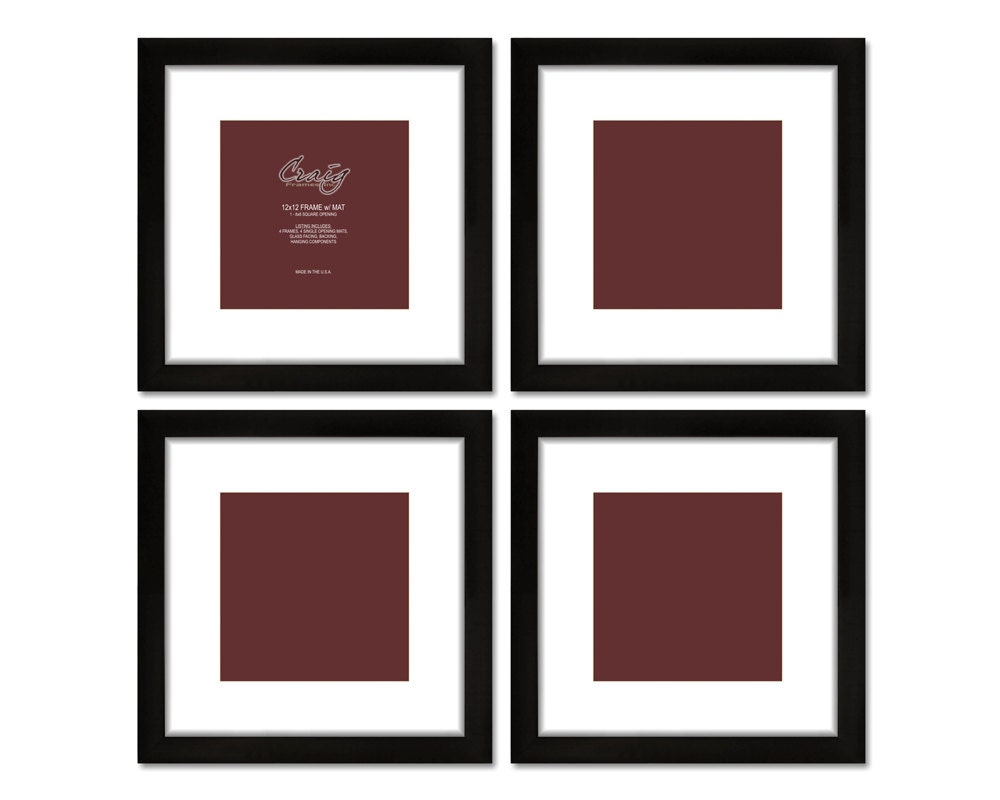 Craig Frames 12x12 Inch Black Picture Frame White Mat