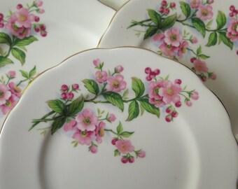 Royal Albert Evesham Dessert Plates Apple Blossoms Gilded Edge English Bone China England Set of Four Valentine's Day Mother's Day Wedding