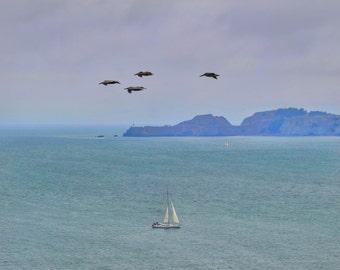San Francisco Sailboat Photo Print