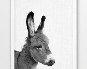 Donkey Print, Donkey Photo, Animals Art Photo, Baby Shower Gift, Nursery Animal Wall Art, Black White Photography, Kids Room Printable Decor