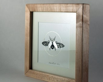 Original Painting of a Scarab Beetle / Silver Leaf, Ink / Framed in Maple / 7''x7''