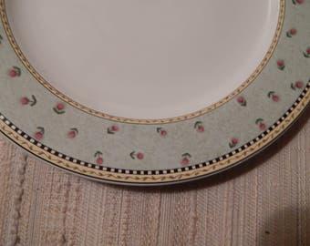"DEBBIE MUMM 11"" Dinner Plates---Watering Can---Sakura stoneware"