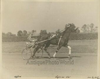 Lexington KY Supreme Hal horse race derby champion antique photo