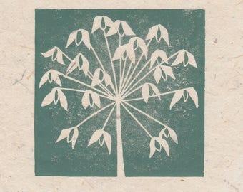 Agapanthus seed head mini linocut print