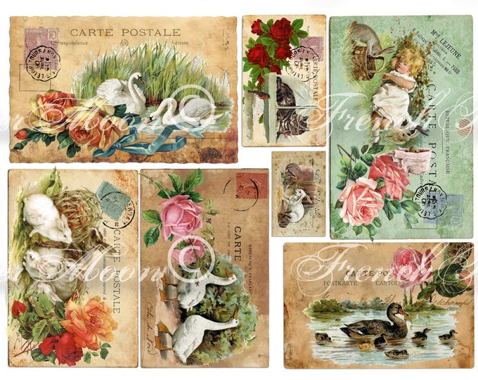 Vintage Digital Postcards, Printable French Postcards, Shabby French Animals, Spring Animals, Roses, Instant Download