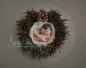 Newborn Digital Backdrop - Circle Heather Wreath