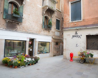Venice, Italy, Courtyard Flowers, Old World Photography