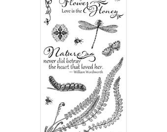 Graphic 45 NATURE SKETCHBOOK 2 Cling Stamps IC0374S cc55