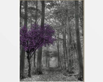 Black White Purple Tree Forest Wall Decor, Purple Pop of Color, Purple Gray Wall Art Matted Wall Pictures