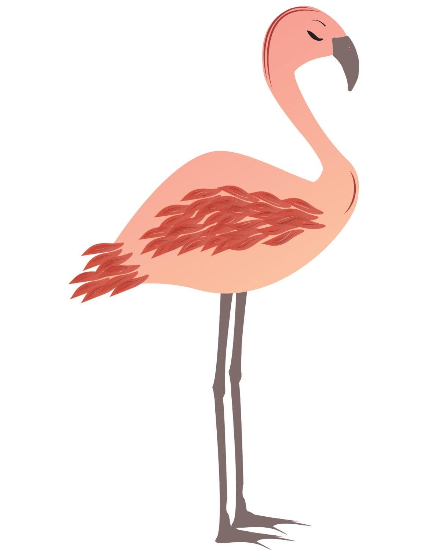 flamingo valentine u0027s day clipart valentine flamingo clipart love