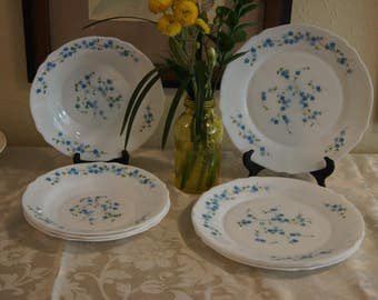 Plates dinner Salad plates ARCOPAL DISHES from France  Dinner Plates, Salad Plates