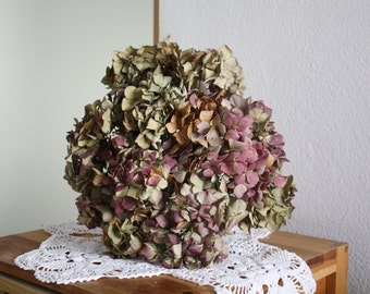 12-Dried-Hydrangea-flowers-DIY-craft-bouquet