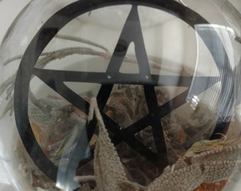 Herbal Pentagram Floating Ornament
